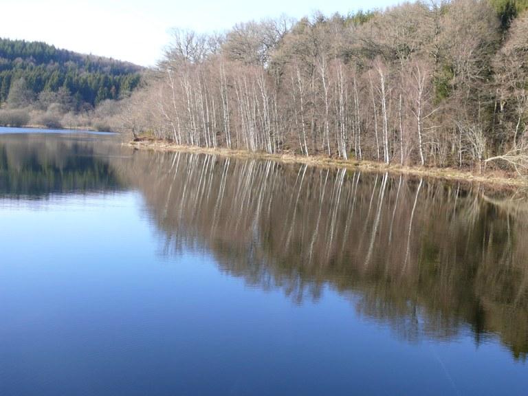 Le reflet des lacs